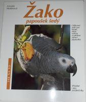 Žako papoušek šedý