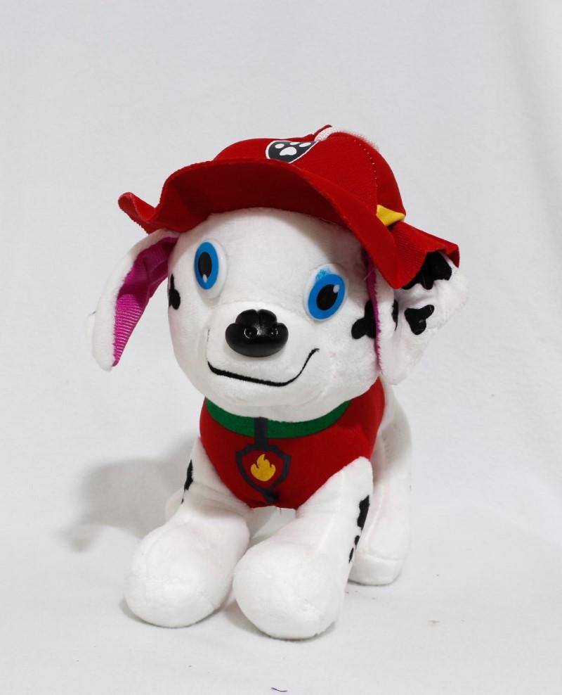 PAW dog 5