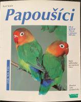 Parrots 1st part